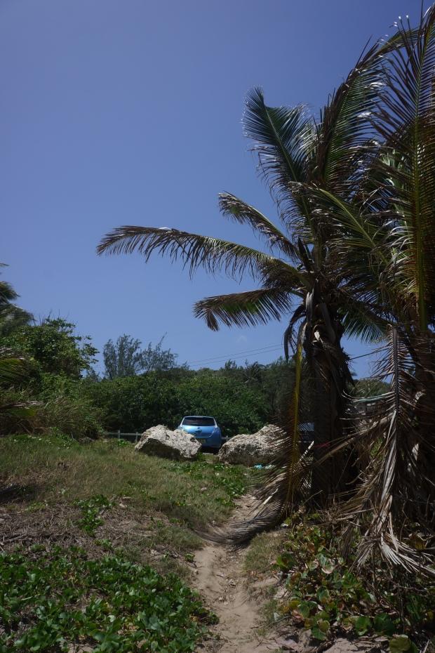 barbados island drive 177
